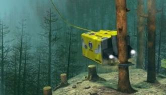 Подводный лесоруб