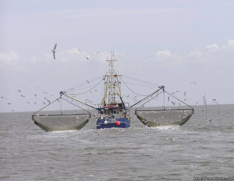 Российских рыбаков оштрафовали за незаконное пересечение эстонской границы